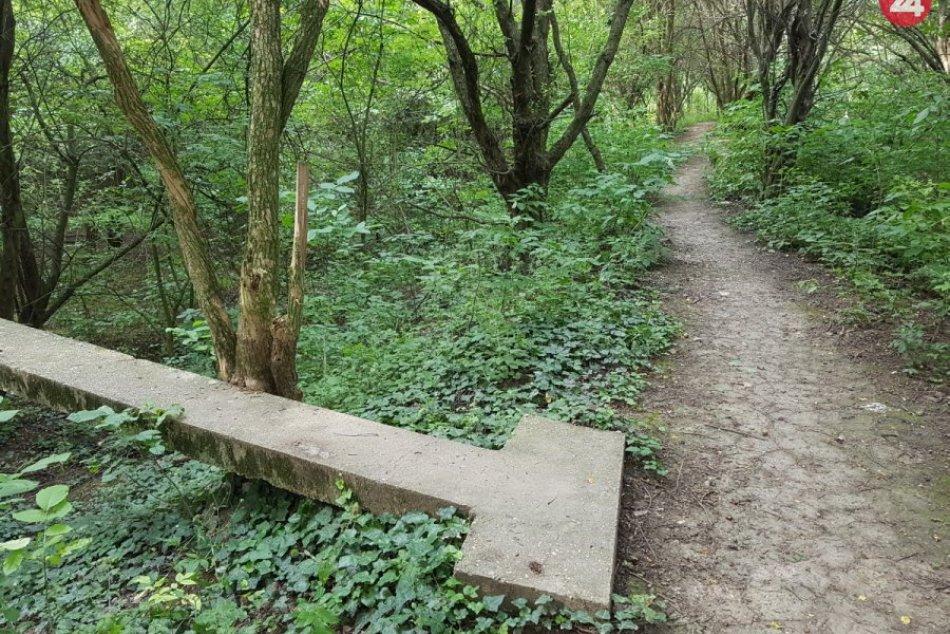 Lesná cestička v Kamennom mlyne, na ktorej pribudne rozhľadňa