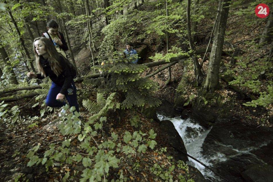 Atraktívne miesta na Slovensku: Toto sú naše vzácne pralesy, hodné obdivu, FOTO