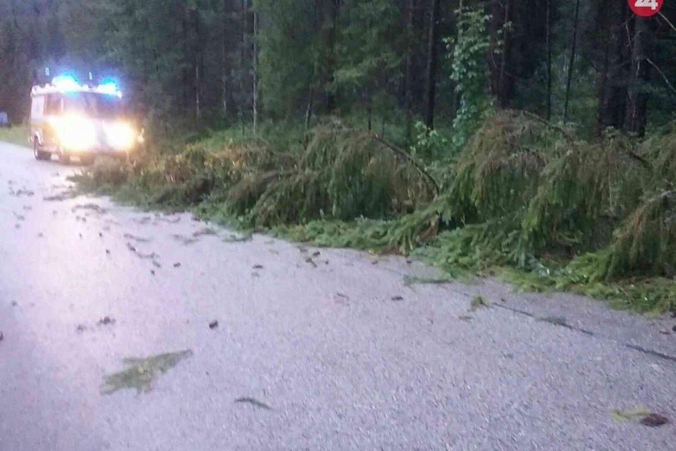 Pre búrky zasahovalo vyše 350 hasičov, odstraňovali najmä popadané stromy