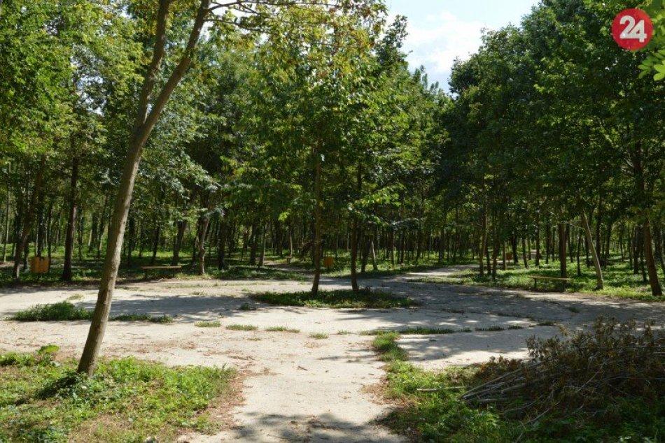 Šaliansky lesopark opäť upravujú: Vo svojich útrobách privíta verejnosť, FOTO