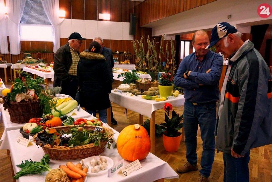 Plody rôzneho druhu: V Topoľčiankach sa konala výstava ovocia a zeleniny