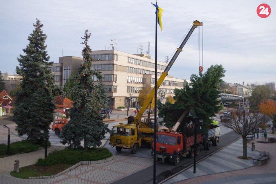 V Michalovciach už stojí vianočný stromček