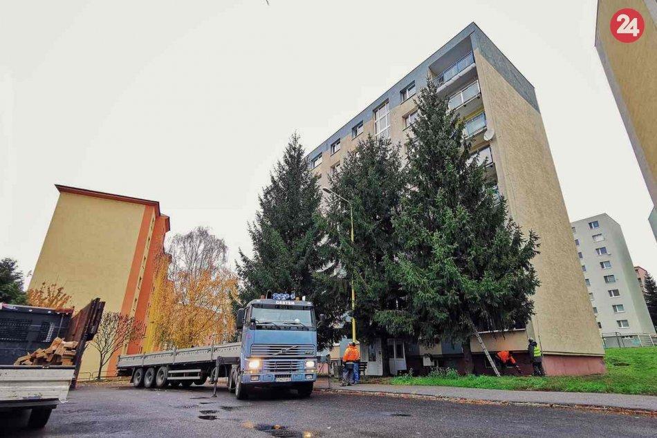 Vianočný stromček už skrášľuje centrum Prešova: Je ním tento krásavec