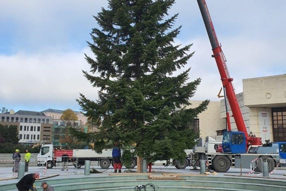 Nitra sa pripravuje na najkrajšie sviatky: Námestie už zdobí vianočný stromček