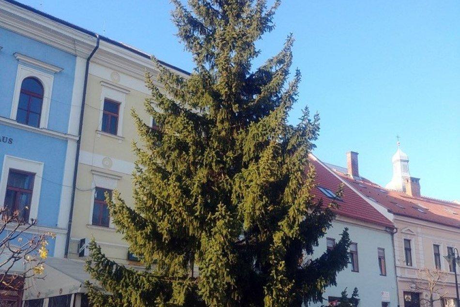 Obrazom: V Rožňave už stojí vianočný strom