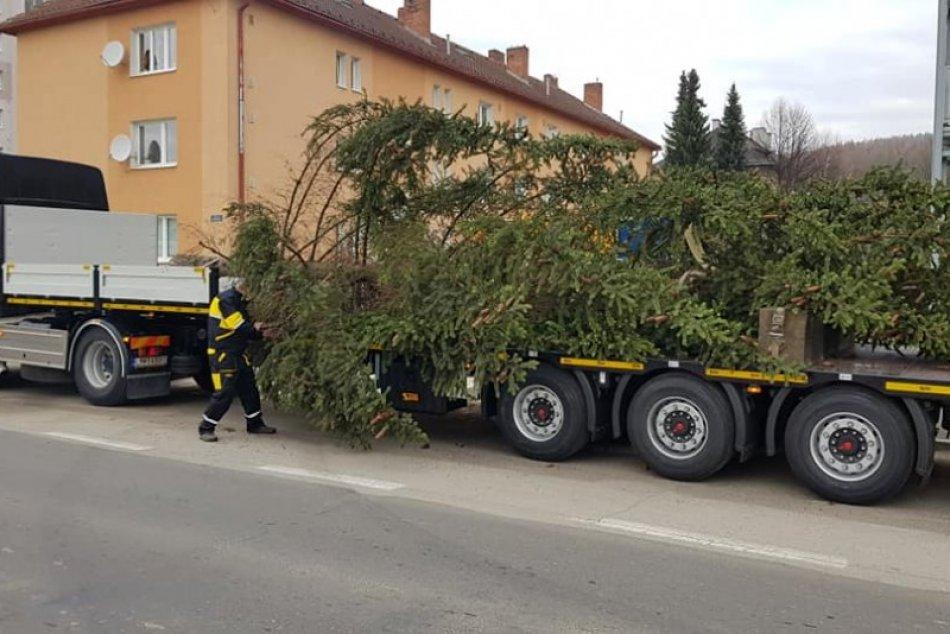 FOTO: Stavanie vianočného stromčeku v centre mesta