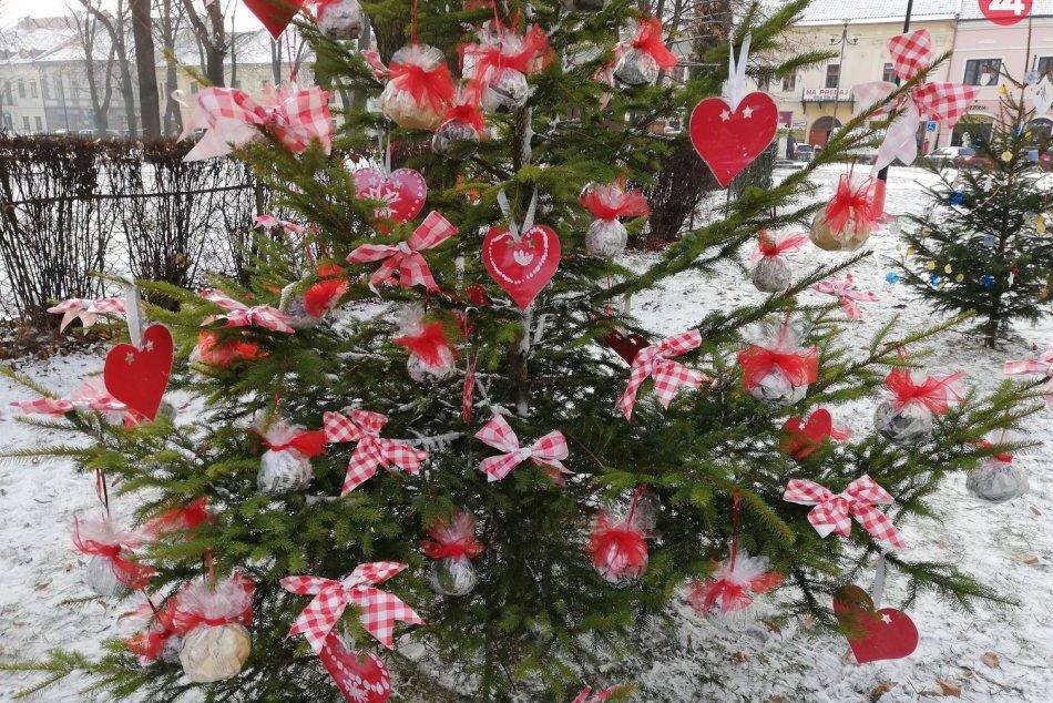 Okolie radnice zdobia vianočné stromčeky, ktoré vytvorili deti