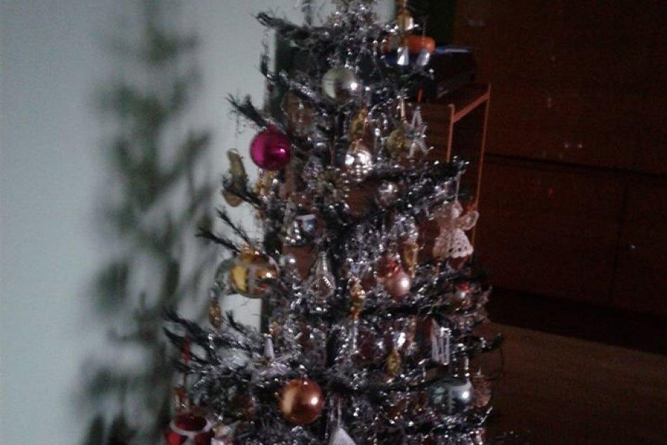 Nazrite do obývačiek Žilinčanov: GALÉRIA vianočných stromčekov