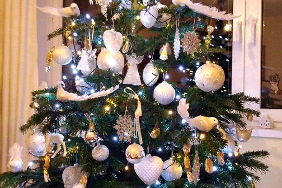 Vianočný stromček očami Popradčanov