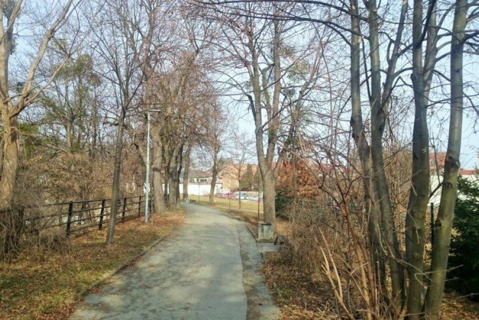 Obrazom: Stromoradie v Prešove prejde zmenami, chystá sa aj výrub
