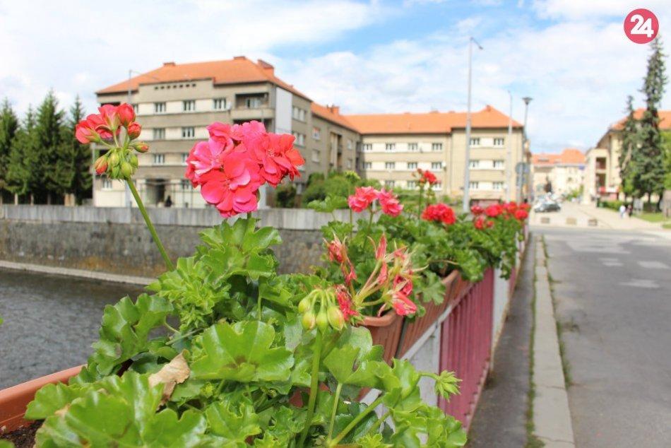 V OBRAZOCH: Bystrické mosty rozkvitli do krásy
