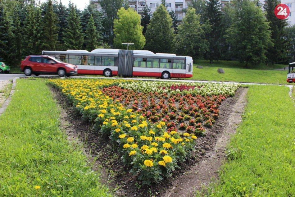 V OBRAZOCH: Bystricu rozžiarili letné kvetinové záhony