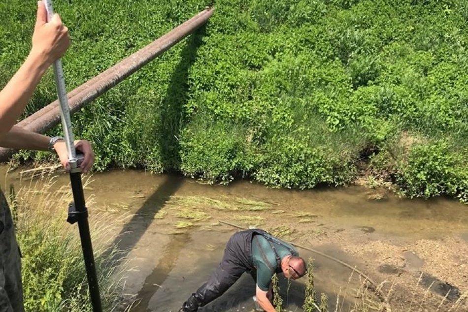 Polícia vyšetruje poškodzovanie životného prostredia