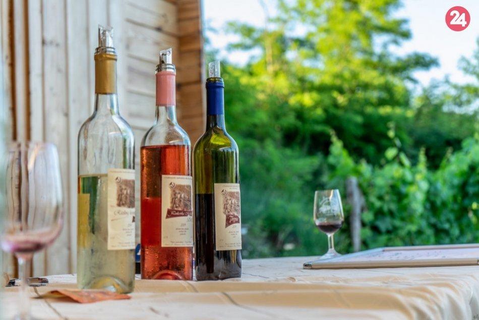 Račianska lokálka, vinohrady
