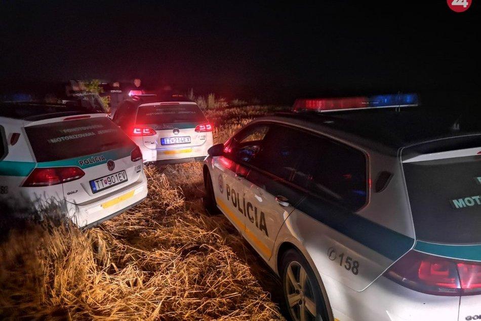 Vodič sa snažil policajtov vytlačiť z cesty, skončil v poli
