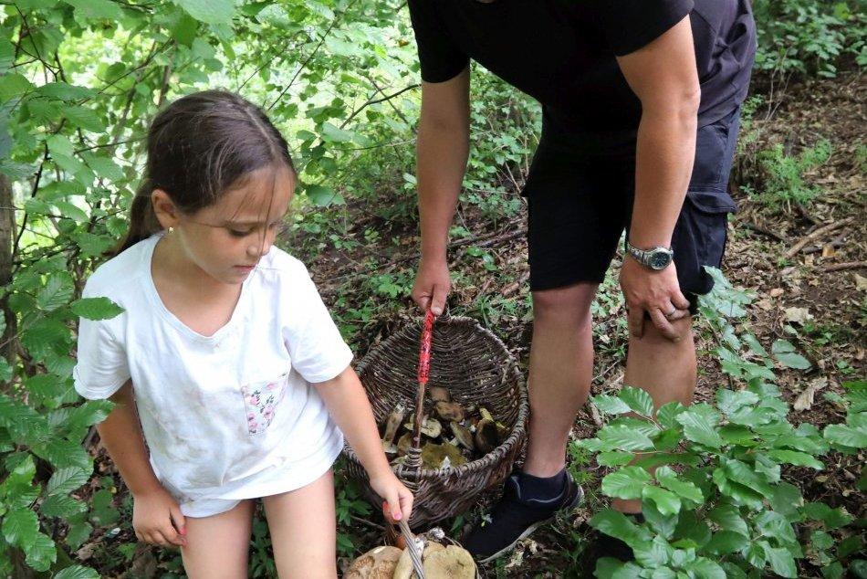 V OBRAZOCH: Hubárska sezóna v lesoch pri Zvolene úspešne pokračuje