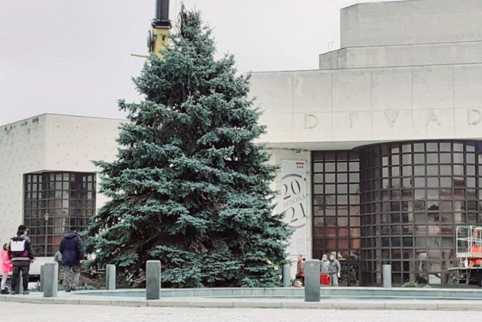 To je krása! Námestie v Nitre už zdobí vianočný stromček, FOTO