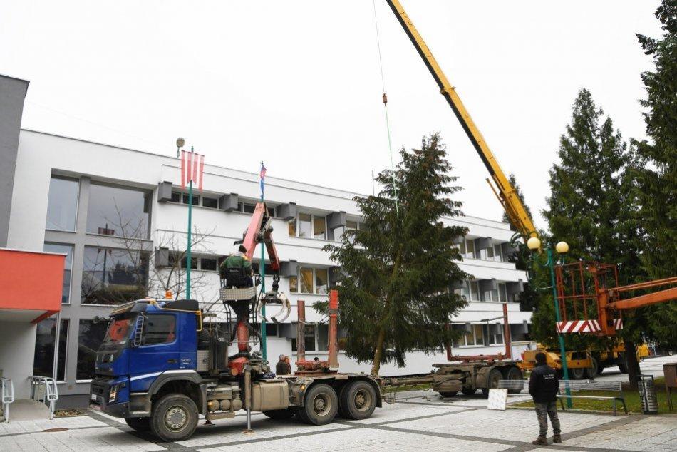 OBRAZOM: Vianočný stromček v Považskej Bystrici je osadený