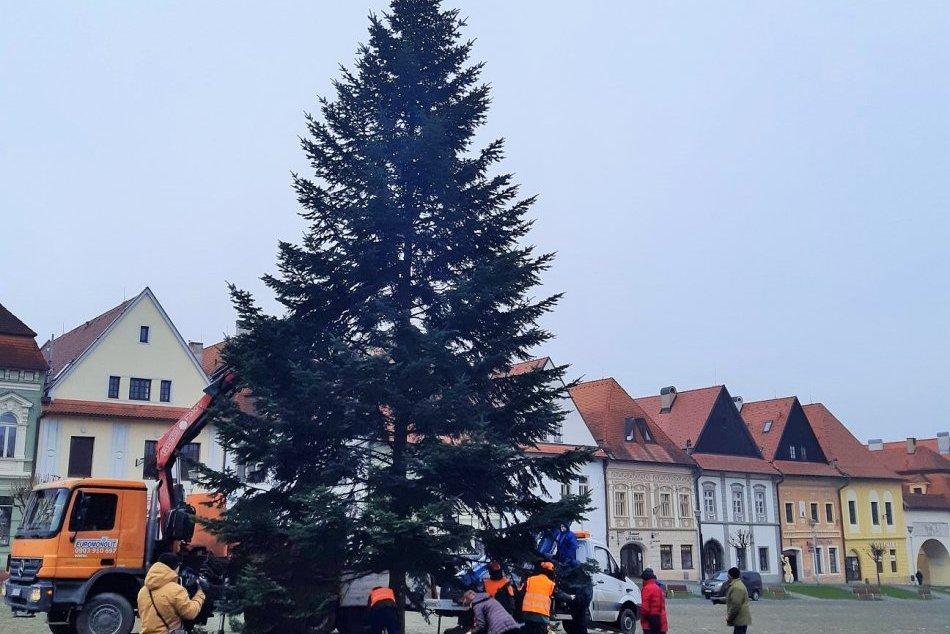 Obrazom: Bardejov už tiež má svoj vianočný stromček