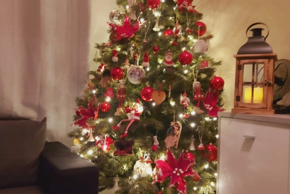 FOTO OD VÁS: Nitrania ukázali svoje vianočné stromčeky, sledujete tú parádu