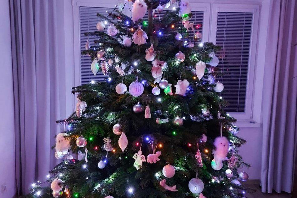 V OBRAZOCH: Lučenčania sa pochválili krásnymi vianočnými stromčekmi