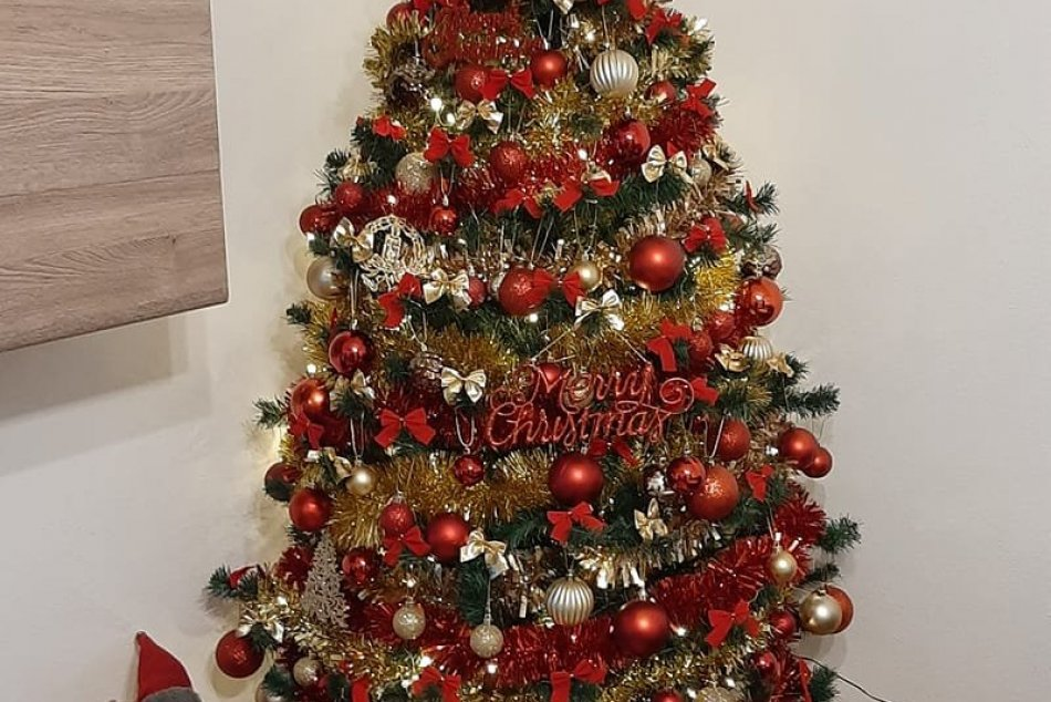 Obyvatelia Nitrianskeho kraja a ich vianočné stromčeky