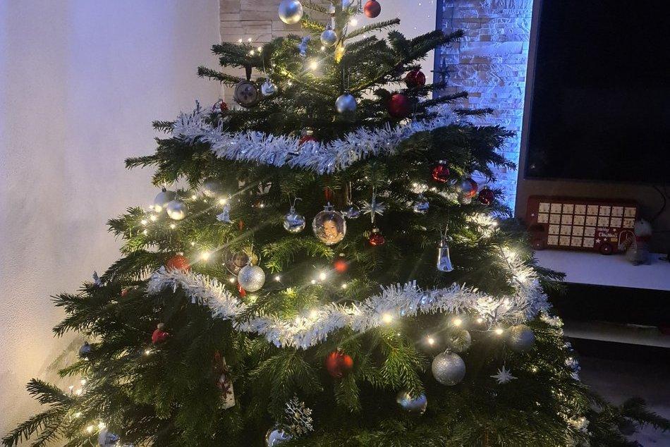 V OBRAZOCH: Brezňania sa pochválili krásnymi vianočnými stromčekmi