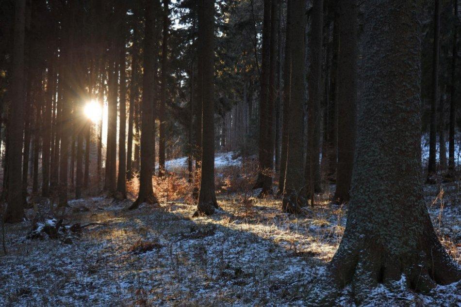 V OBRAZOCH: Chránená krajinná oblasť Poľana na úchvatných zimných záberoch