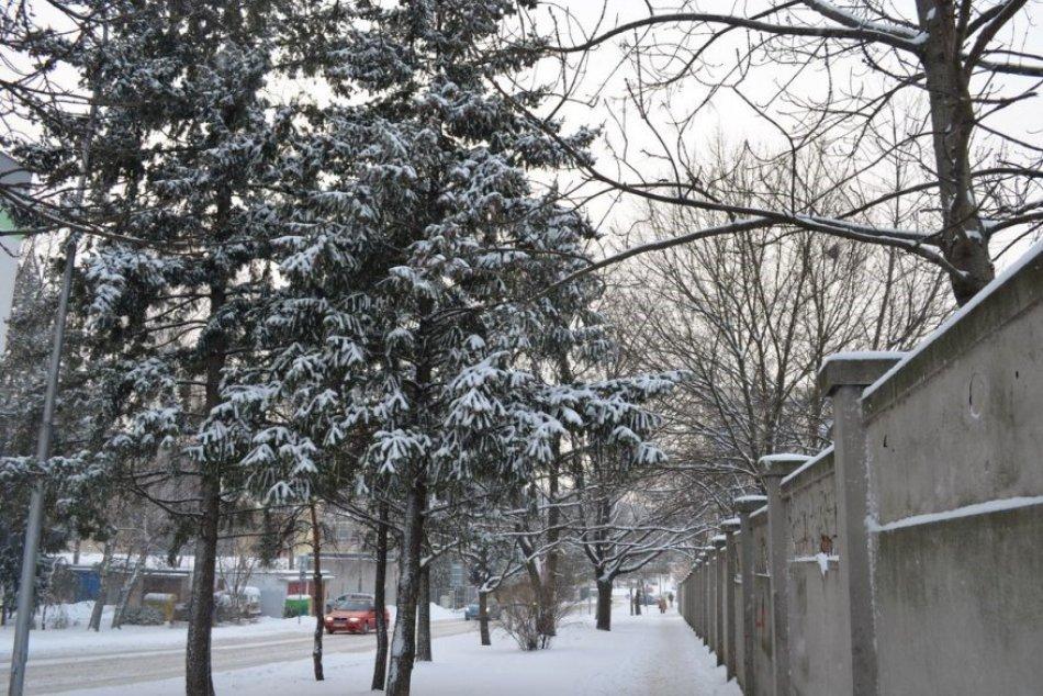 Sneženie v Nitre 12. januára 2017