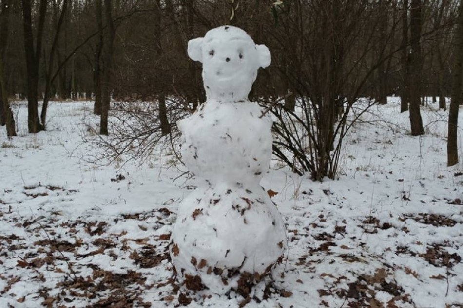 Snehuliaci v Petržalke