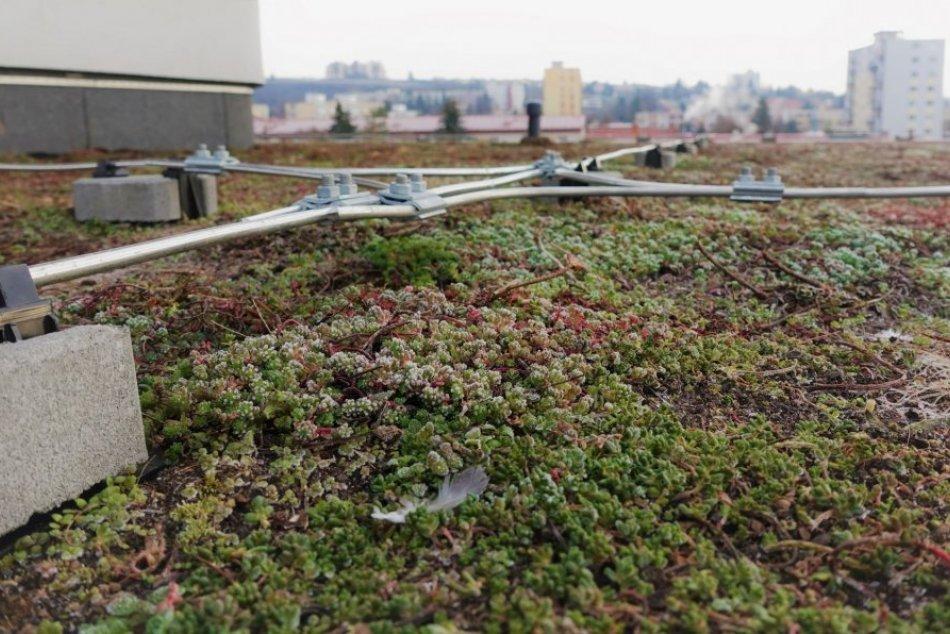 V OBRAZOCH: Mesto vybudovalo už druhú zelenú strechu