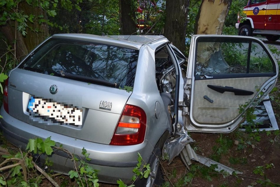 Vodič neprežil náraz autom do stromu