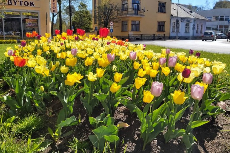 Pestrofarebná jar zavítala do Popradu