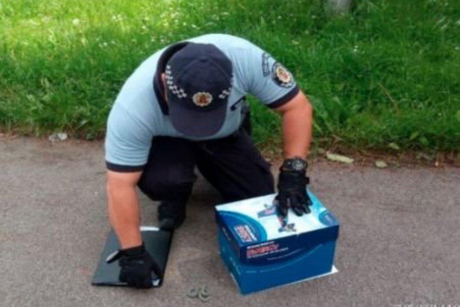 V OBRAZOCH: Mestskí policajti v Bystrici ratovali hada aj mláďa sovy