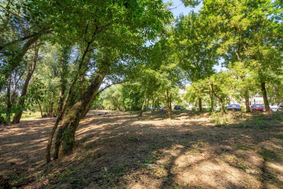 FOTO: V Trenčíne orezávajú stromy a vznikne poloprírodný park na Východnej ulici